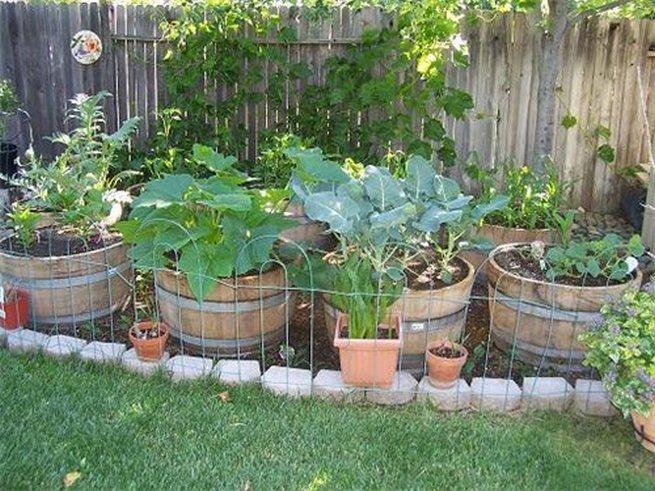 Как украсить огород и сад своими руками фото